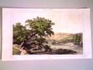 Gravure Ancienne Italie, Lac De Némi - Stampe & Incisioni