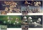 THAILAND - 1989 ,  4 MC , MK  -  Pilze - Plants