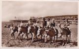 WESTON SUPER MARE -THE KIDDIES JOY RIDERS.  DONKEYS - Weston-Super-Mare