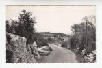 LA ROQUEBRUSSANNE (83) La Nouvelle Route De Mazaugues - CPSM Dentelée PF N° 72514 (Var) - La Roquebrussanne