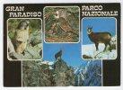 PARCO NAZIONALE GRAN PARADISO - Animali. Viaggiata 2001. - Italia