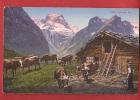 K933 Auf Der Alp, Kuhe, Vaches Et Berger.Rosenlaui. Léger Pli Angle Inf. Droit.Non Circulé.Photoglob 582 - BE Berne