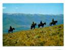 (i034) - Horsemen In The Malutis - Lesotho / Copyright D. Schwagen - Ref. No. 206 - ABC Press - Lesotho