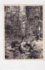 19350 Photo Scout Foret Debout Sur Cheval , 11x8 Cm