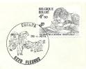 Belgium Cover With Postmark Mailing Coach Fleurus, 28-4-1979 - Postkoetsen