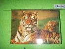 6 )  Tigresse Et Son Petit - Tigres