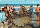 Brésil-BRASIL- SALVADOR-BA -BAHIA -Pescadores De Xaréu ( Poissons- Pêcheurs, Fischermen)  *PRIX FIXE - Brazil