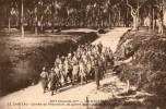 CP 17  - LE CHATEAU  - Corvée Des Prisonniers De Guerre Allemands - Ile D'Oléron