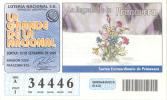 LA LLEGADA DE LA PRIMAVERA AÑO 2009 LOTERIA NACIONAL REPUBLICA ARGENTINA - Lottery Tickets