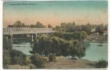 Ngaruawahai Bridge, Auckland Color  Wildman And Areys - Nouvelle-Zélande