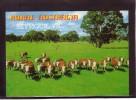 AUSTRALIA Victoria Seymour Rural Australia Mint Postcard #133 - Australia