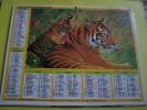 Almanach  Du Facteur 1992  LA POSTE - Meurthe Moselle N°54 - TIGRES - GIRAFES - Jean  Cartier Bresson - - Formato Piccolo : 1991-00