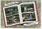 72  NOGENT SUR LOIR  -  CPM 1950 / 60  -  MULTIVUE - Francia