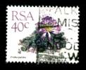 RSA - Piante Grasse - Cacti -1988 - Frithia Pulchra - Viaggiato  - Used - - Sukkulenten