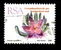 RSA - Piante Grasse - Cacti -1992 -stapelia Grandiflora - Viaggiato  - Used - - Sukkulenten