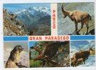 PARCO NAZIONALE GRAN PARADISO (AOSTA) - Stambecco, Marmotta, Aquila, Camoscio. Viaggiata 1991 - Italia