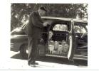 CP DIVERS ROBERT DOISNEAU LES CHIENS DU MARQUIS DE CUEVAS EN 1953 - Doisneau