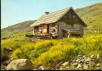 NEVACHE- Vallée De La Clarée *Chalet-refuge De Ricou * Bon état* Ed.F.Francou. 1982 (timbre 1,80fr) - Francia