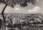 $3-1750 - Ragusa Panorama - F.g.  - Viaggiata - Ragusa