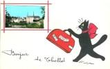 86 Bonjour De THOLLET - France