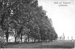 Tongerloo 2: Abdij Van Tongerloo. Lindenlaan 1911 - Westerlo