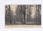 CPA - BOIS LE ROI - Foret De Fontainebleau - Le Gros Hetre - Bois Le Roi