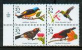 USA 1998 - Oiseaux Tropicaux / Tropical Birds - MNH - Sperlingsvögel & Singvögel