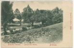 Brisbane Queenland   Botanical Gardens Stengel Dresden No 12426 Small Size - Brisbane