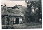 B3693     LOMMEL: Typische Limburge Hoeve - Lommel