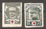 Cinderella Vignette Association Des Dames Francaises Croix Rouge Rode Kruis WO 1 G. Mazel En G. Mangin - Rotes Kreuz