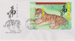 Tokelau FDC Block Mi 43 Lunar New Year - Year Of The Tiger 2010 - First Day Cancellation In Atafu - Tokelau