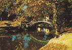 19420 MASSY-VERRIERES Le Parc ; Raymon -  Pont - France