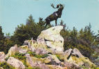 19438 Beaumont Hamel (france) - Parc Commémoratif Terre-Neuvien - Le Caribou -Mage 5802.22 - Animaux & Faune
