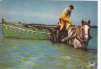 19440 Récolte Goemon Cotes Leon. 3397 Jack -barque BR267734 Attelage, Cheval - Pêche