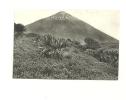 Congo : Volcan Karisimbi. Vue Prise Du Versant Sud Vers 3800 M. D'altitude - Congo - Kinshasa (ex Zaire)