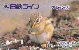 Télécarte Japon / 110-016 - ANIMAL - ECUREUIL - SQUIRREL Japan Animal Phonecard - EICHHÖRNCHEN  Telefonkarte - 121 - Other
