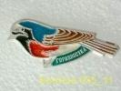 Animals: Birds Redstart - Phoenicurus / Old Soviet Badge _35_an0047 - Animaux