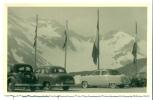 Originele Foto - Achterzijde Postkaart - Auto - Renault - Citroën - Ford ? - Cartes Postales