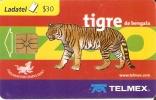 TARJETA DE MEJICO DE UN TIGRE DE BENGALA (TIGER) - Sin Clasificación