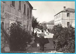 GRUDA ... Konavle - Near Dubrovnik ( Croatia ) * Not Travelled * Donkey Ane Esel Asino Burro Asno - Croatia
