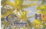 CAPE VERDE - Palm Trees, Used - Kapverden