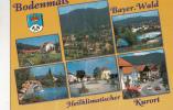 ZS18073 Bayerischer Wald Bodenmais Multiviews Used Perfect Shape - Bodenmais