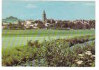 19557 MARINGUES - Vue Generale ; La Cigogne 63.210.01 C4 -sans Arbres - Maringues