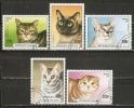 France (Togo)  1997  Cats  (o) - Ohne Zuordnung