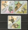 France (Togo)  1999  Cats  (o) - Ohne Zuordnung