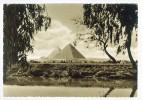 Postcard - Egypt     (V 6677) - Unclassified