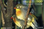 TELECARTE DU JAPON ...PASSEREAU... VOIR SCANNER - Pájaros Cantores (Passeri)