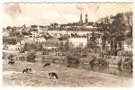 DDR Sachsen, Waldenburg Gel., VKV Reichenbach Nr. 14/1866, EVP - DM - Waldenburg (Sachsen)