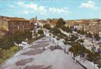 Vejano Piazza -  Viterbo - Viterbo