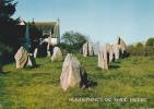 19594 Saint Pierre Quiberon, Alignements Megalithiques 24 Menhirs 5 Lignes. MX2474 Jos.